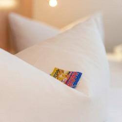 gut-schlafen-in-coburg